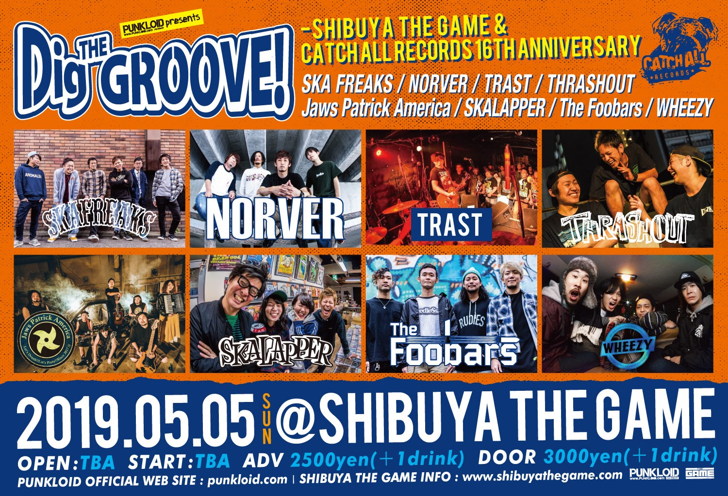 Dig THE GROOVE!